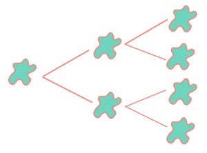 Progresiones Geométricas en la división celular
